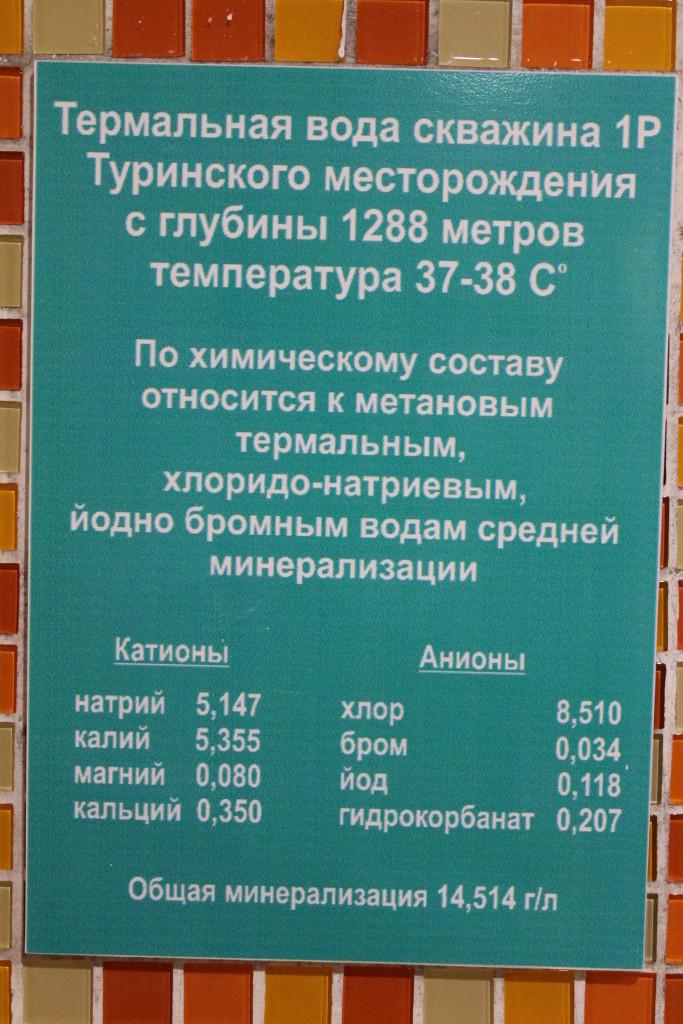 горячий источник Туринск состав воды