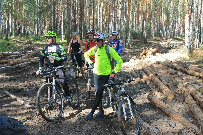 велопокатушка от Полевского до Екатеринбурга
