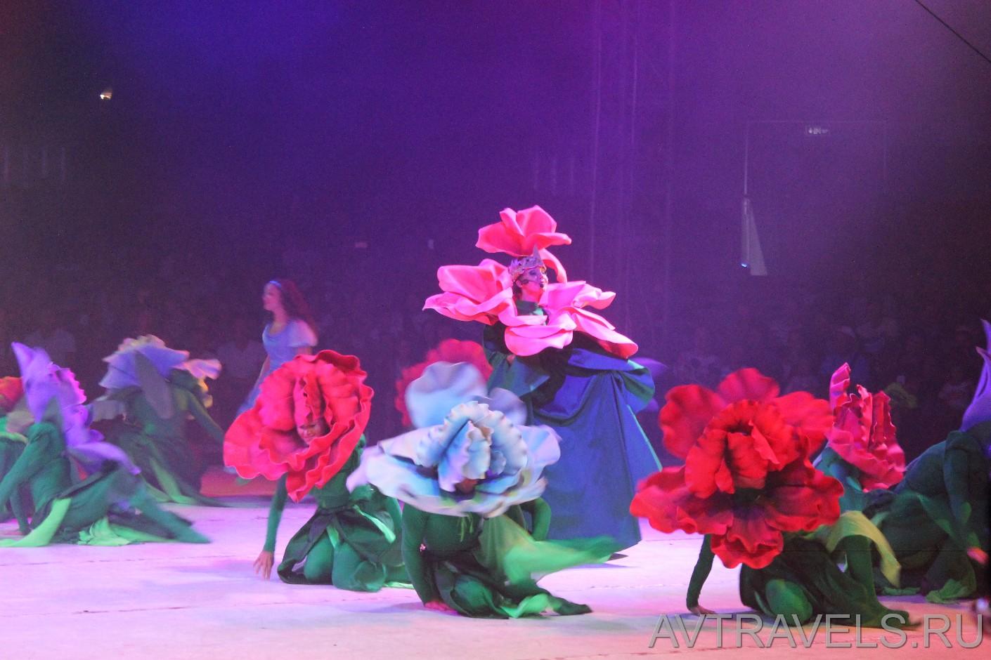 цирковой мюзикл Алиса