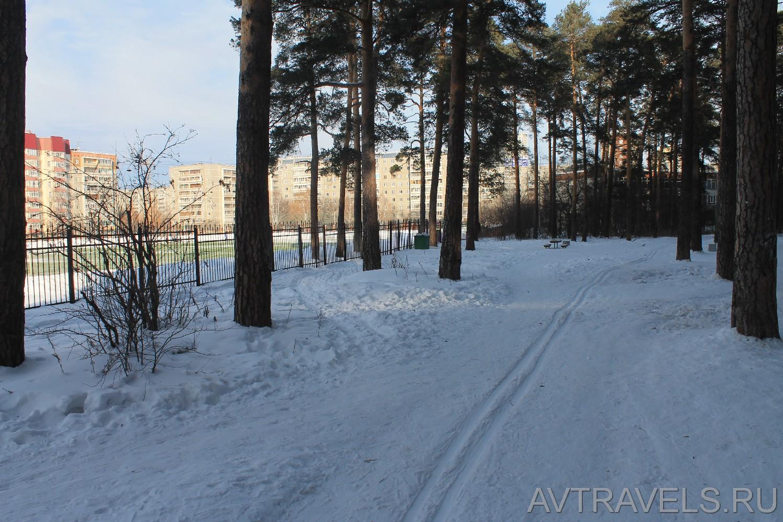 лыжня Екатеринбург Юго-западный лесопарк
