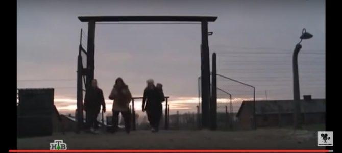 РАЗВИВАЮЩИЙ ФИЛЬМ: «Холокост — клей для обоев?», режиссер Мумин Шакиров, Россия, 2013г.