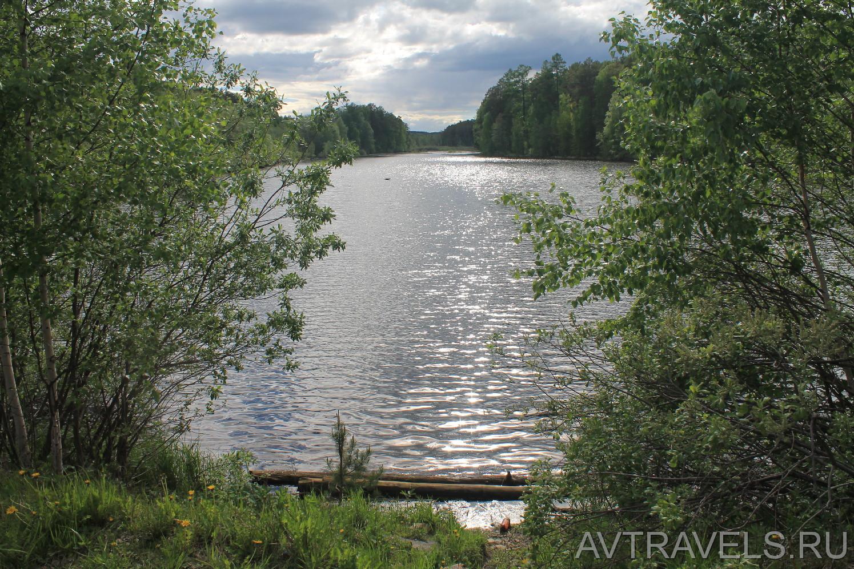 Озеро Палкинский торфяник