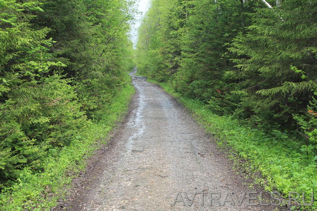 гора шунут дорога